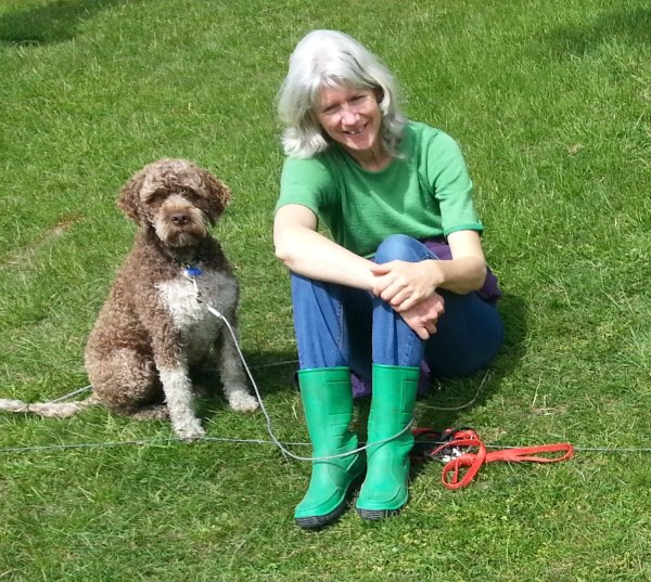 this picture shows Karen and Stella, Lagotto Romagnolo, enjoying the sun in the dog run