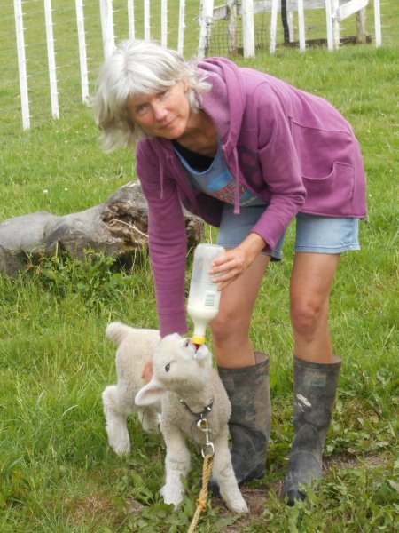 this picture shows Karen feeding the lamb, Bubbles